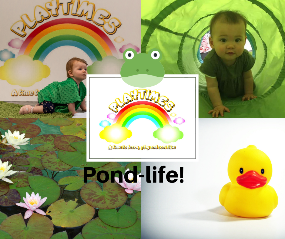 baby and toddler pondlife class
